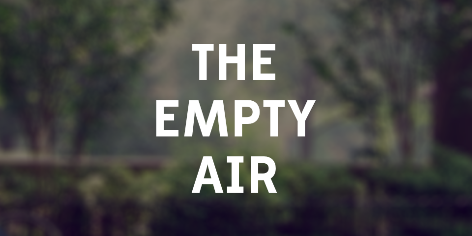 the empty air