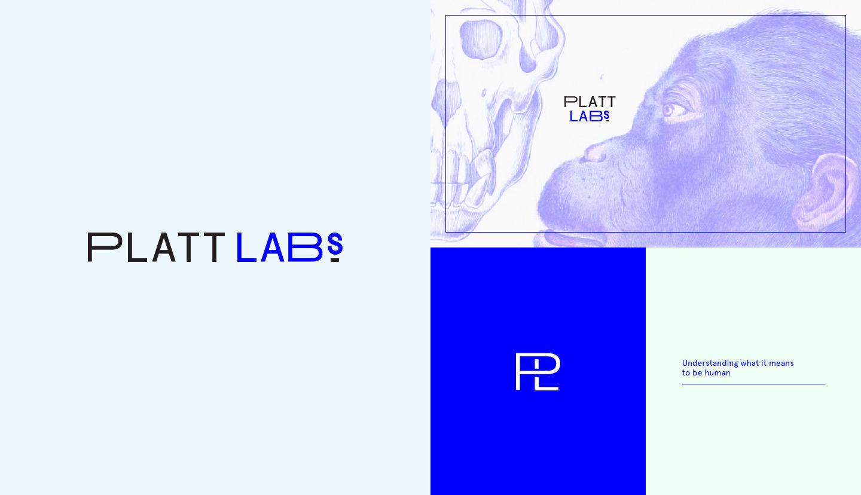 platt labs logo alternates