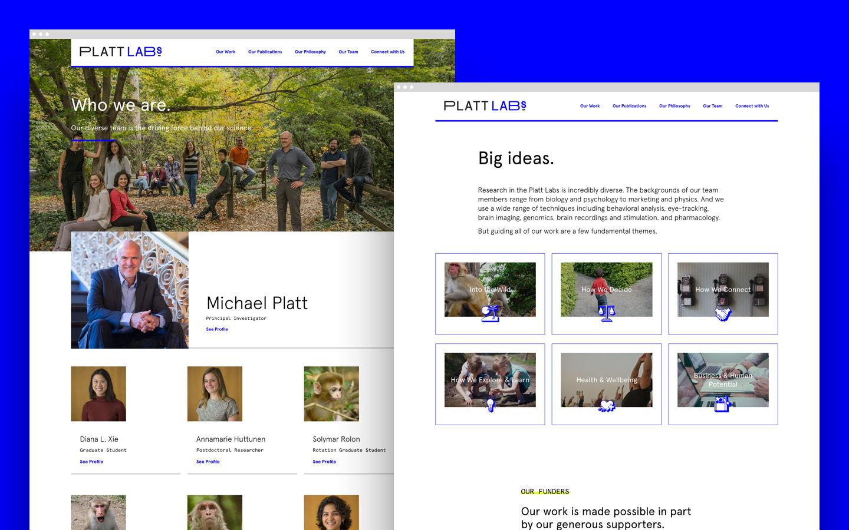 platt labs web pages